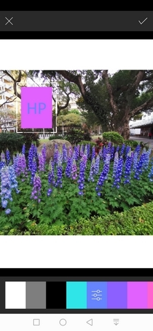 "HP Sprocket口袋相印機:相片隨手印、隨手貼、分享列印、AR""動""相片 - 21"